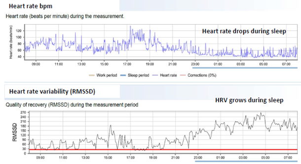 HRV measuring for Masters athletes in practice – Rowing Analytics